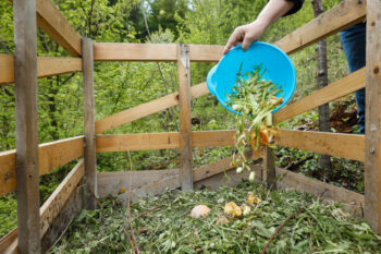 Odpady zielone - definicja, rodzaje i metody utylizacji