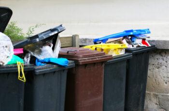 Cena za wywóz śmieci - zmiany w 2019 roku