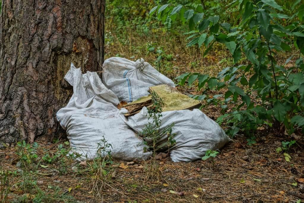 Konsekwencje i kary za wywóz śmieci do lasu oraz palenie śmieci