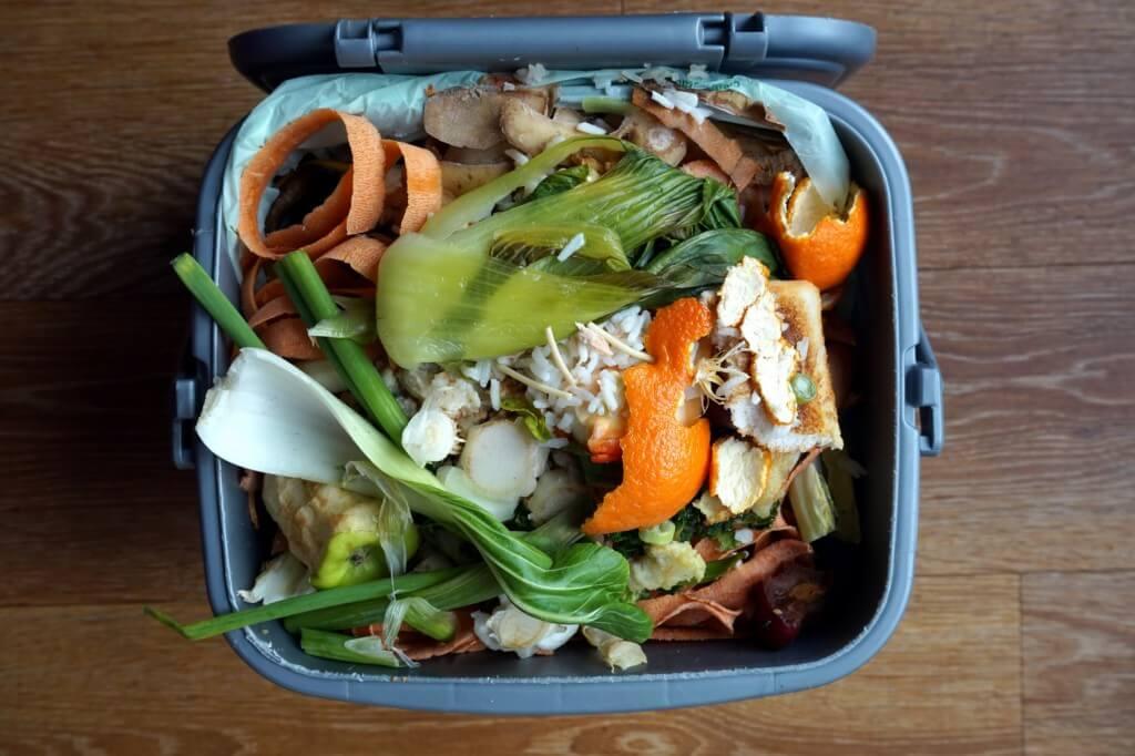 Odpady ulegające biodegradacji - definicja i przykłady